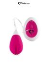 Oeuf vibrant Anna rose - Feelztoys : Anna rose de la marque Feelztoys est un joli œuf vibrant rechargeable qui allie un moteur silencieux et une forme ingénieuse.